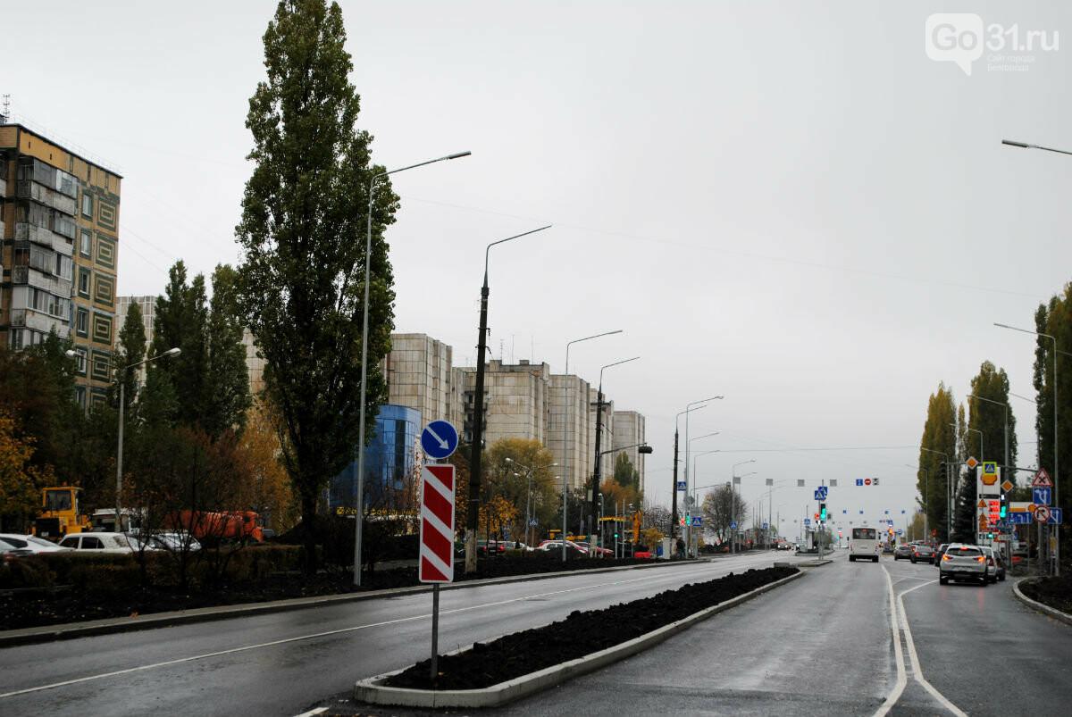 улица Шорса в Белгороде, Максим Алтухов