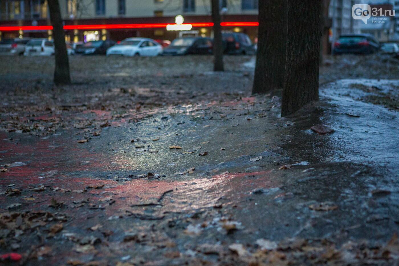 Гололёд в Белгороде, Фото: Антон Вергун