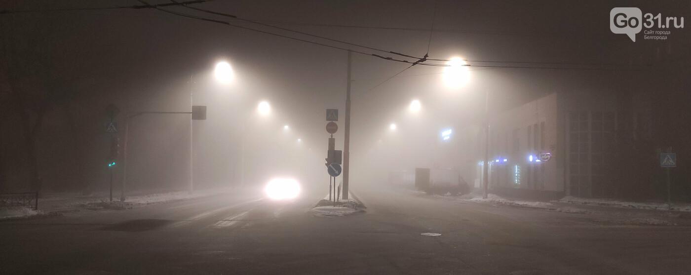 Такая разная погода в Белгороде, фото-11