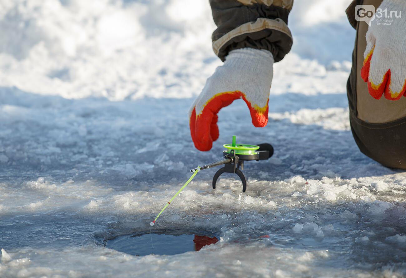 Зимняя рыбалка под Белгородом, Фото: Фото: Андрей Закоморный