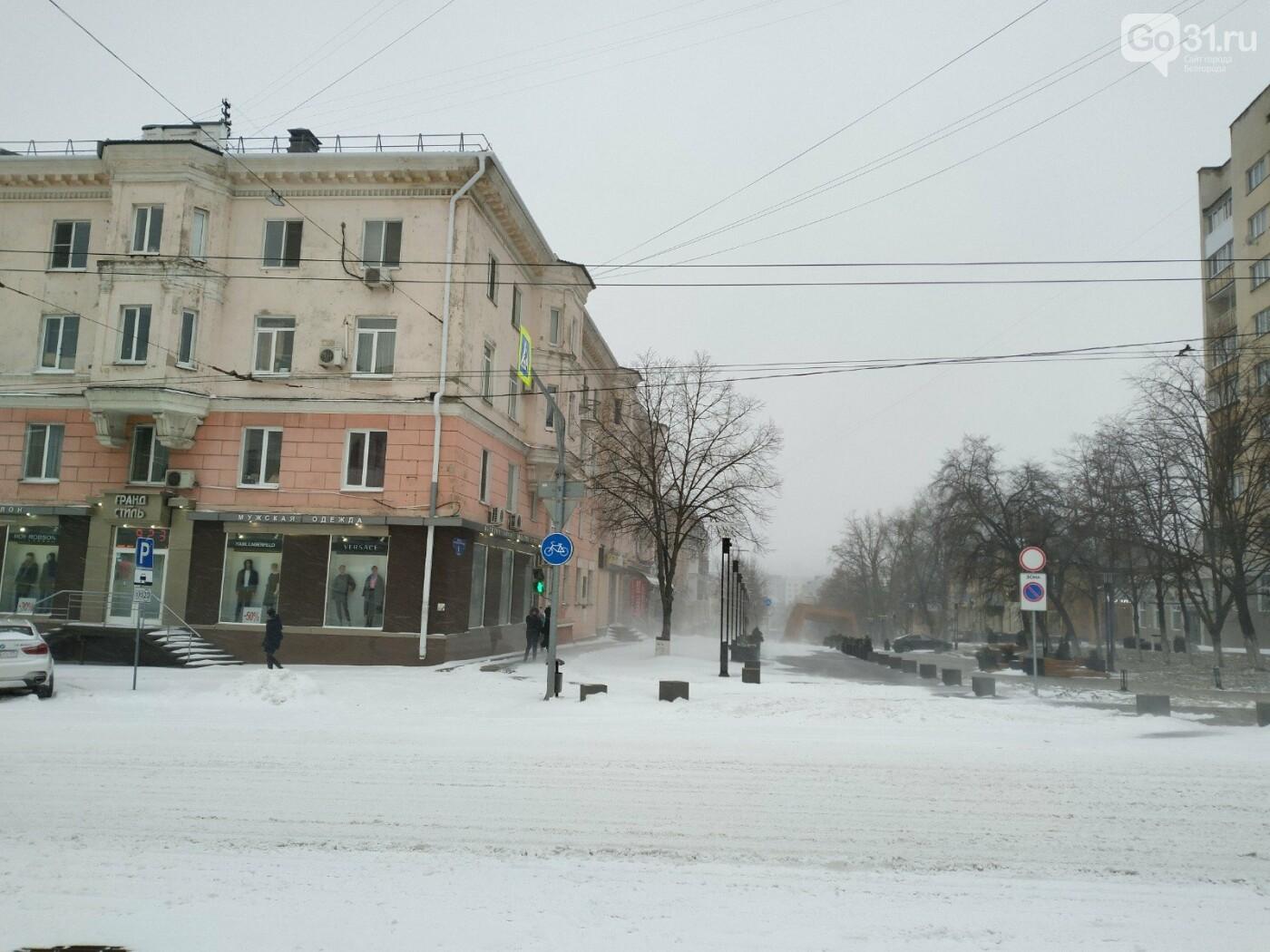 Метель в Белгороде