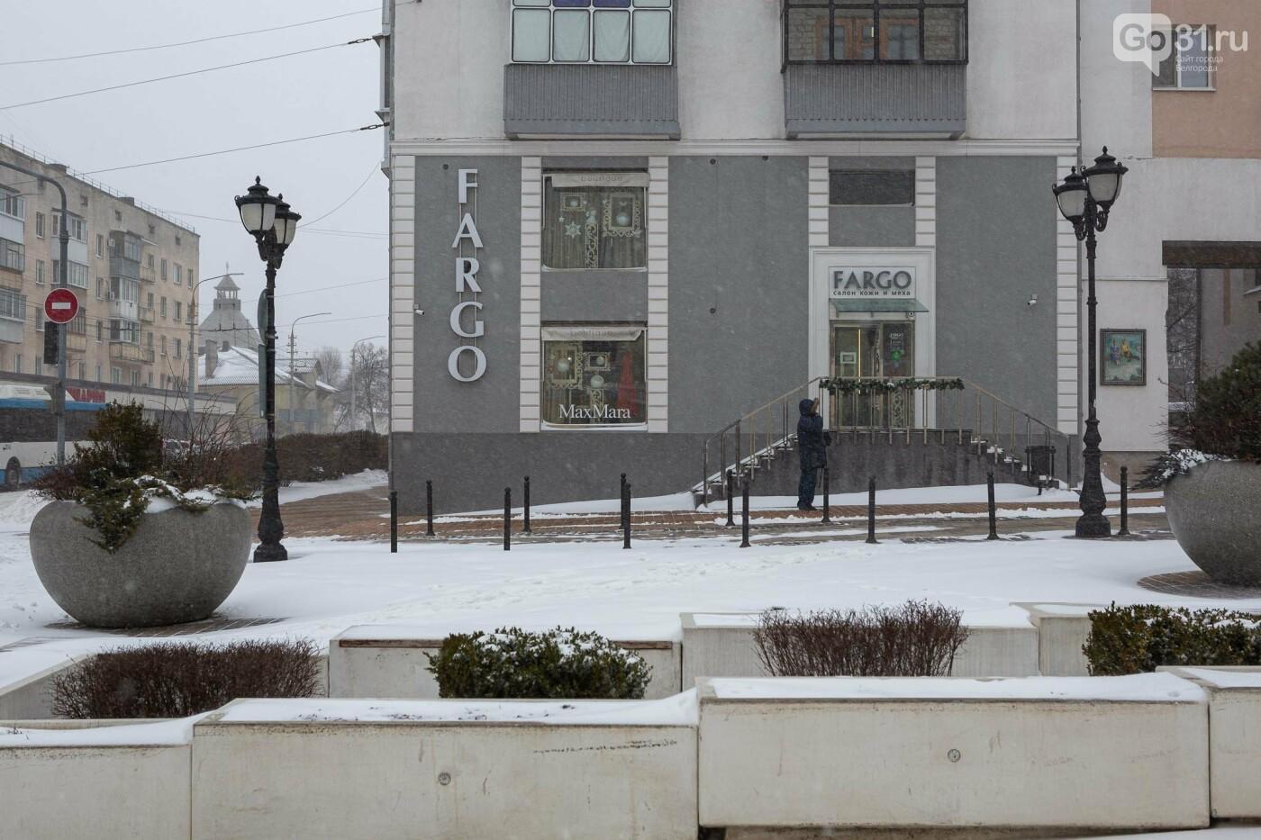 Метель в Белгороде, Фото: Антон Вергун