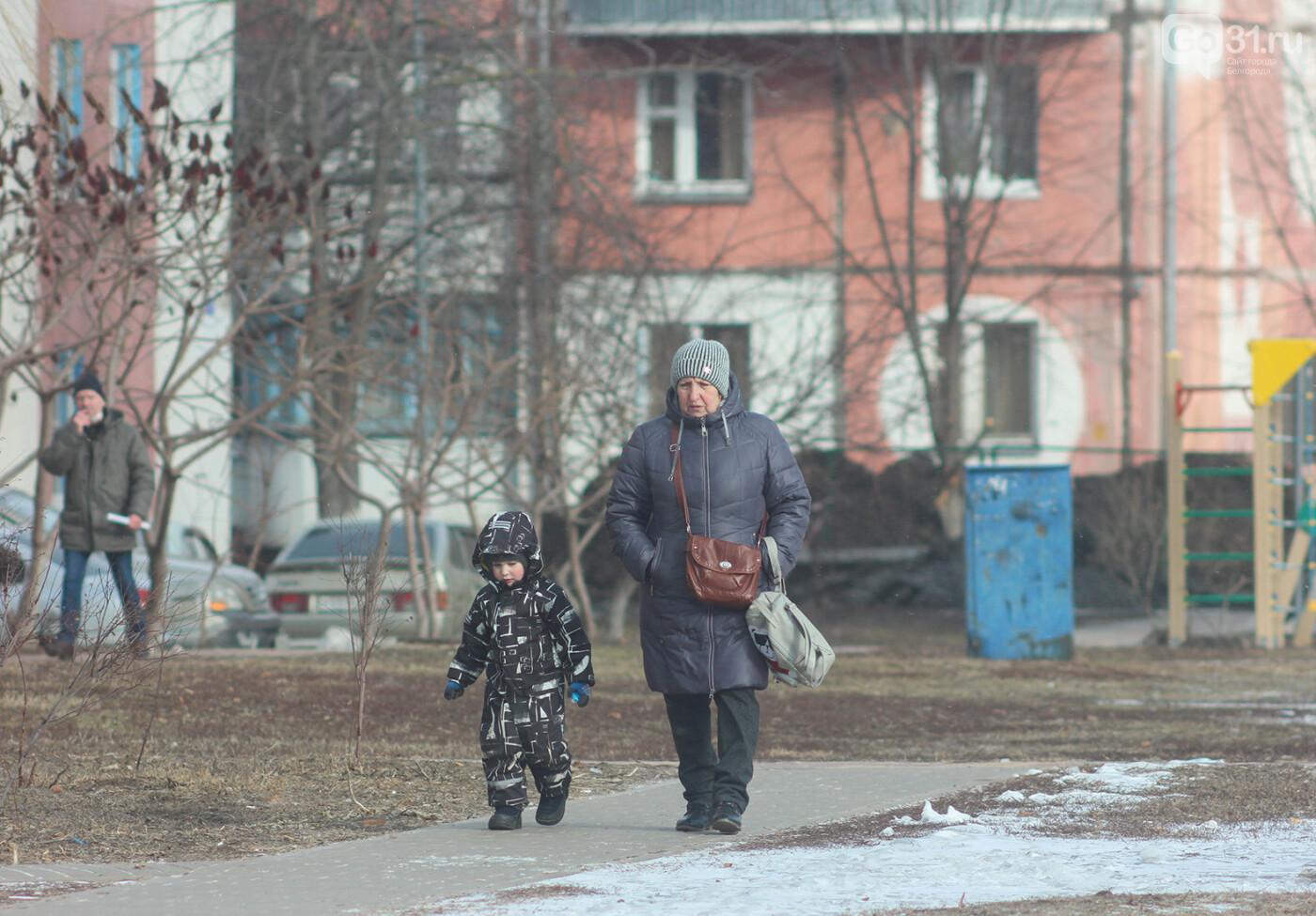 В посёлке Разумное Белгородского района, Фото: Александр Лобынцев