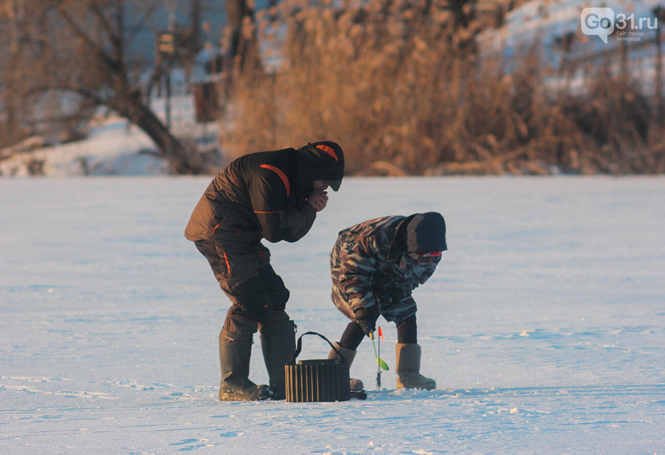 Зимняя рыбалка на Белгородском водохранилище, Фото: Александр Лобынцев