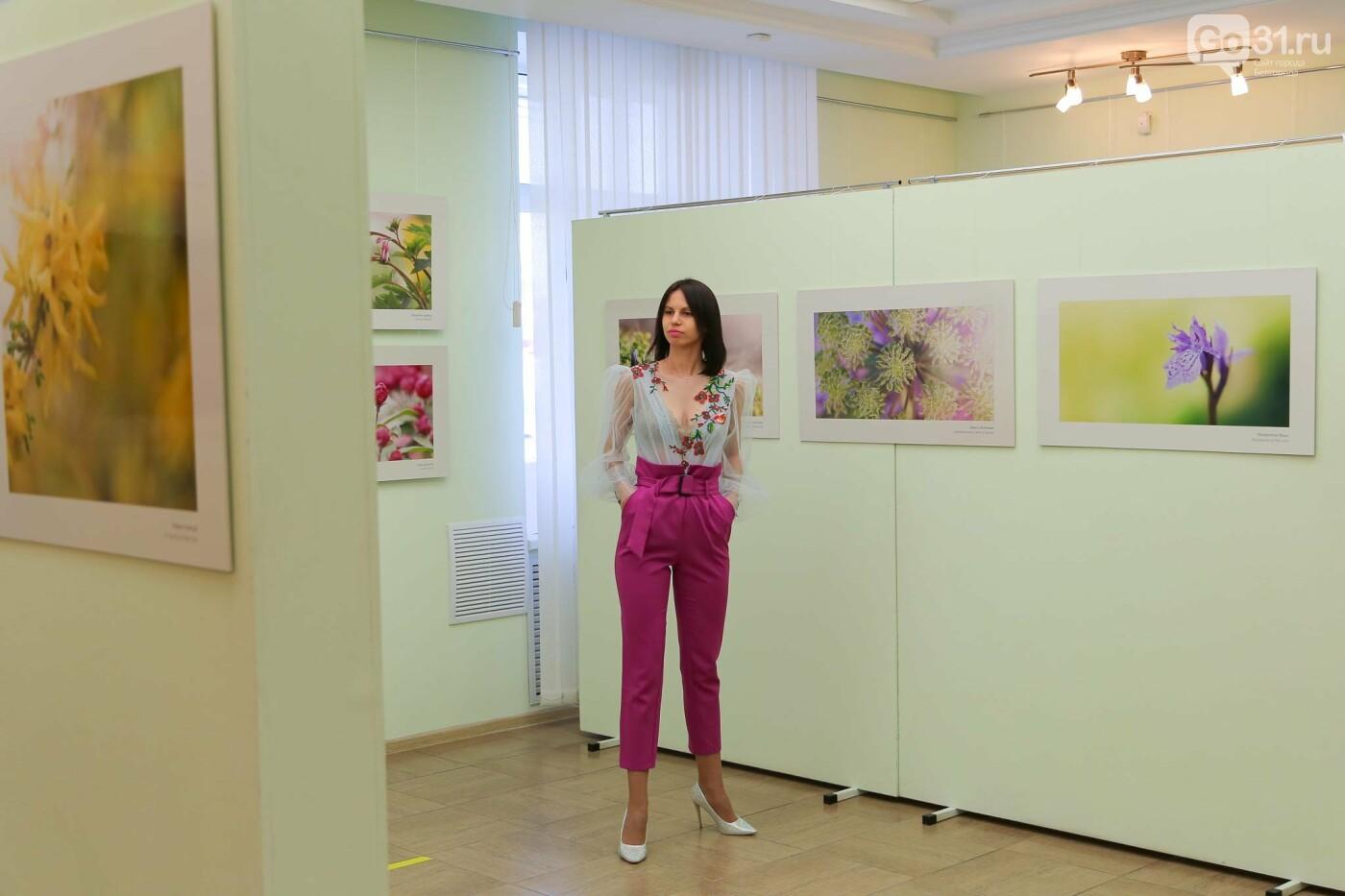 Выставка о красоте, гармонии и нежности