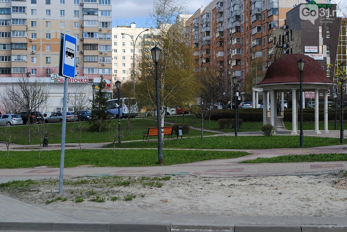 новые остановки, фото: Максим Алтухов