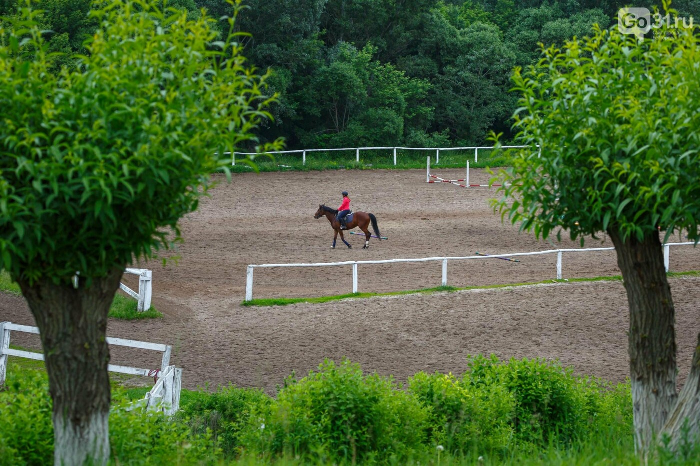 Конные соревнования в Белгороде, фото Антон Вергун