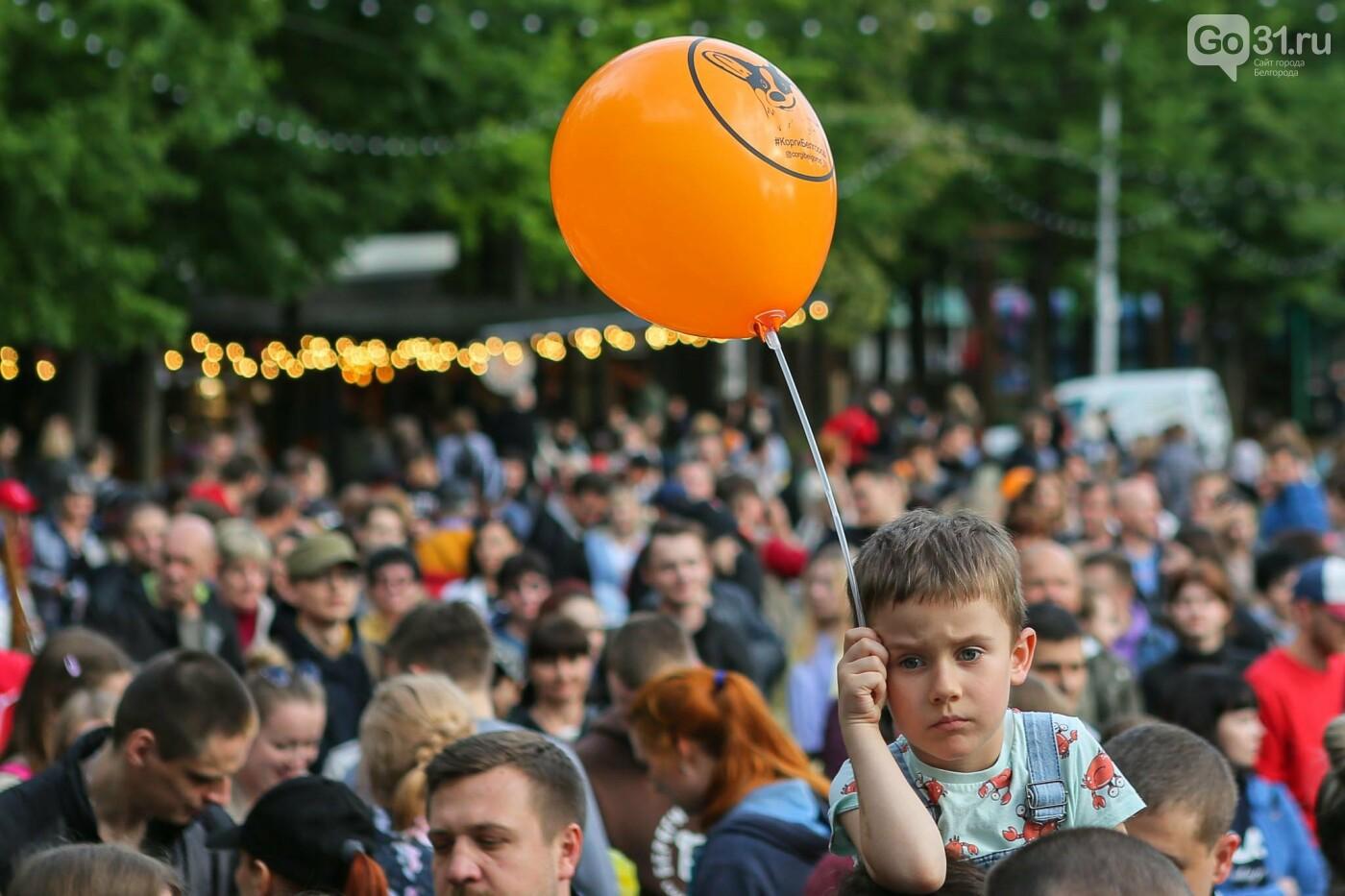 Парад корги в Белгороде, Фото: Антон Вергун