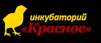 Инкубаторий Красное