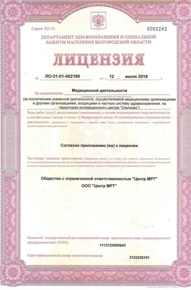 Лицензия, фото-1