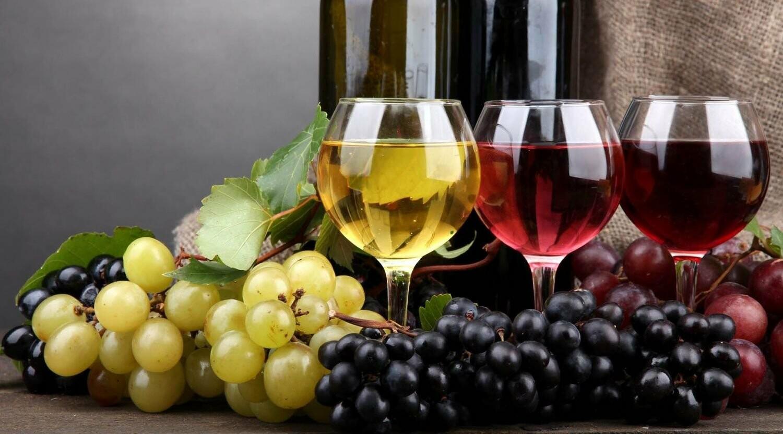 Оборудование для виноделия, фото-1