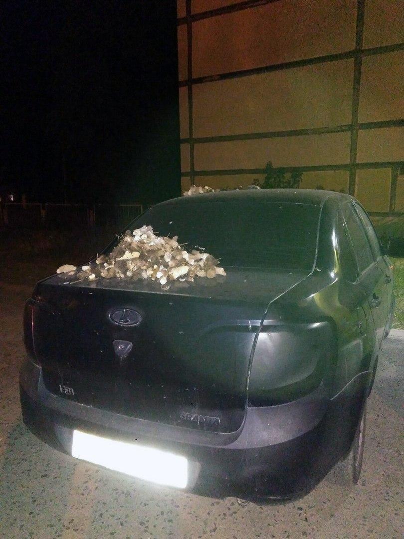 Облившую фекалиями машину соседа белгородку назвали героиней, фото-1