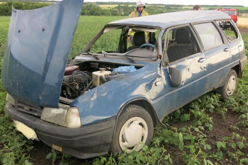 Водитель ВАЗа погиб, врезавшись в опору линий электропередач, фото-2
