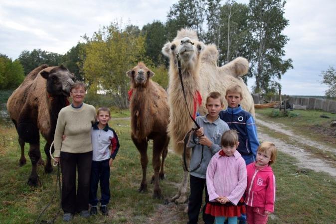 В Грайвороне осваивают экзотический вид животноводства, фото-1