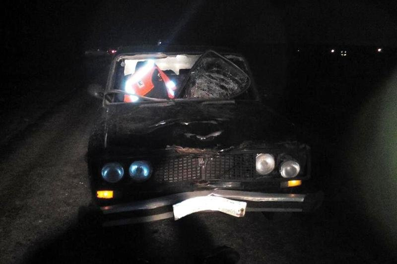 Лежавший на дороге пешеход погиб под колёсами «Фольксвагена», фото-2