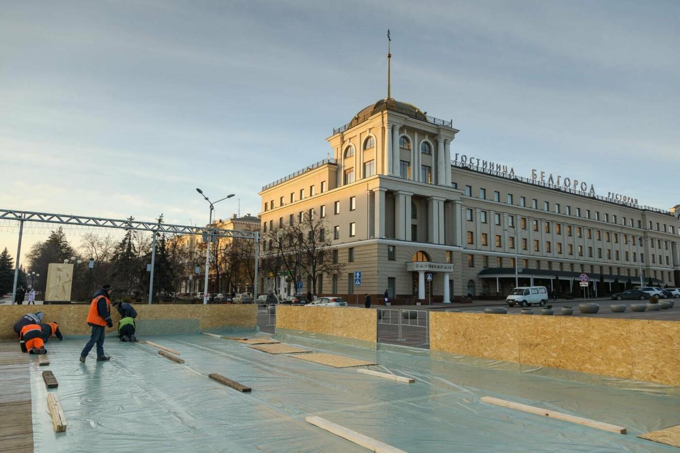 В соцсетях сообщили об установке ёлки на площади, но рабочие всё разобрали. Почему?, фото-13