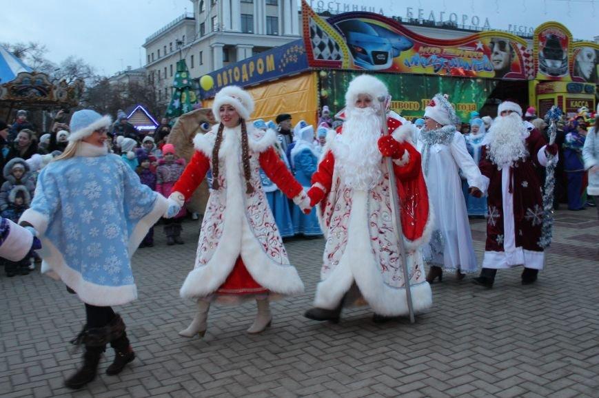 Рекорд по подъёму гири, забег обещаний и зимнее плавание: что ждёт белгородцев на новогодних праздниках, фото-1