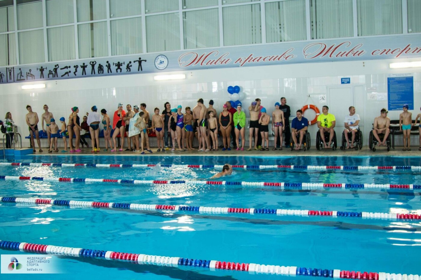 Предновогодний заплыв: члены Федерации адаптивного спорта провели соревнования по плаванию, фото-17