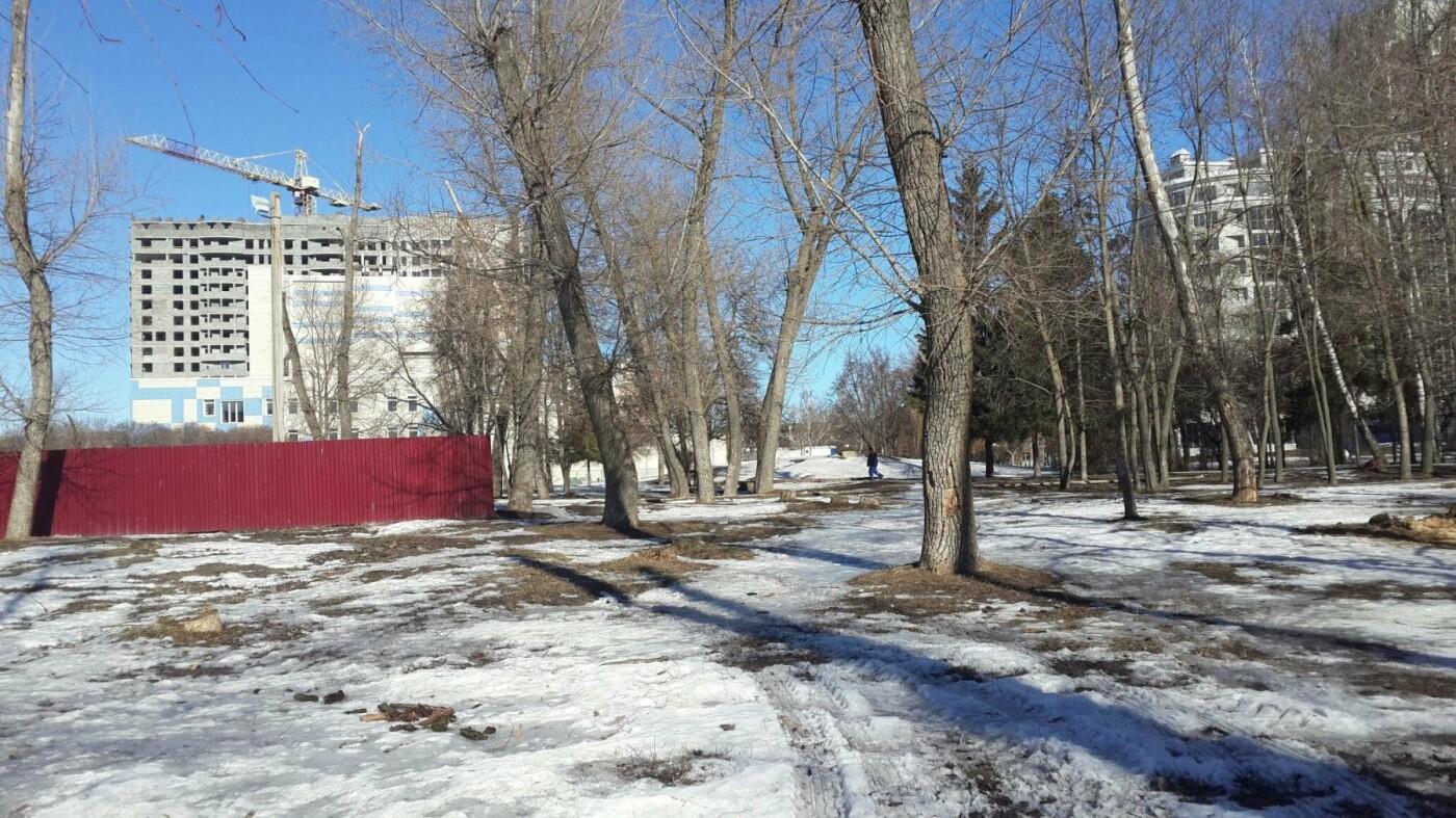 Белгородцы выберут концепцию благоустройства Центрального парка , фото-2