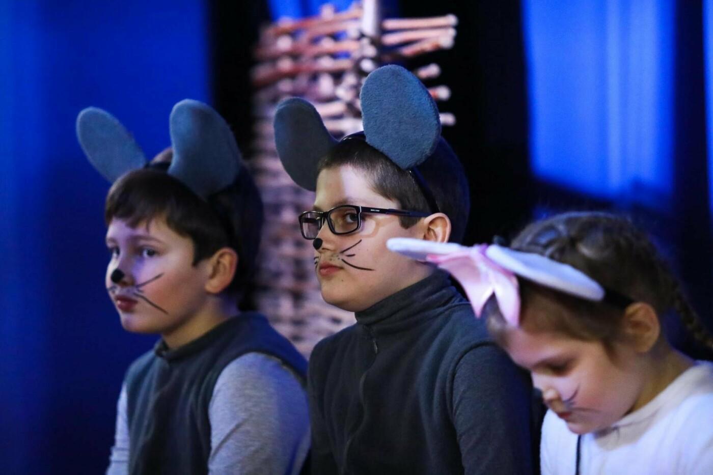 В Белгороде состоялась премьера инклюзивного спектакля «Приключения белой мышки», фото-5