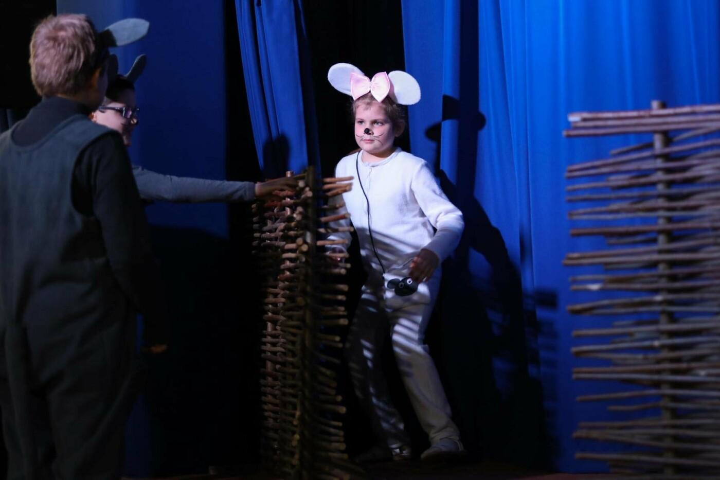 В Белгороде состоялась премьера инклюзивного спектакля «Приключения белой мышки», фото-4