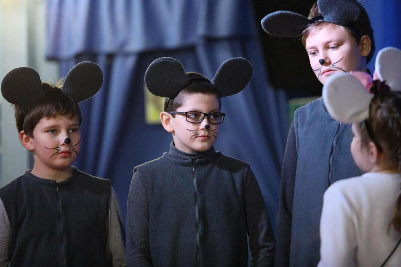 В Белгороде состоялась премьера инклюзивного спектакля «Приключения белой мышки», фото-9