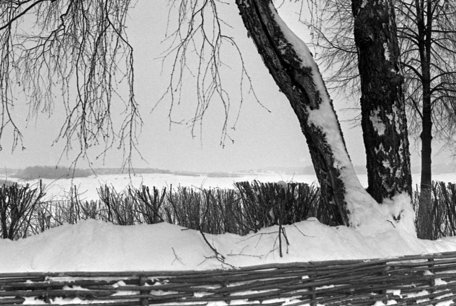 Белгородцев приглашают на две памятные фотовыставки, фото-2