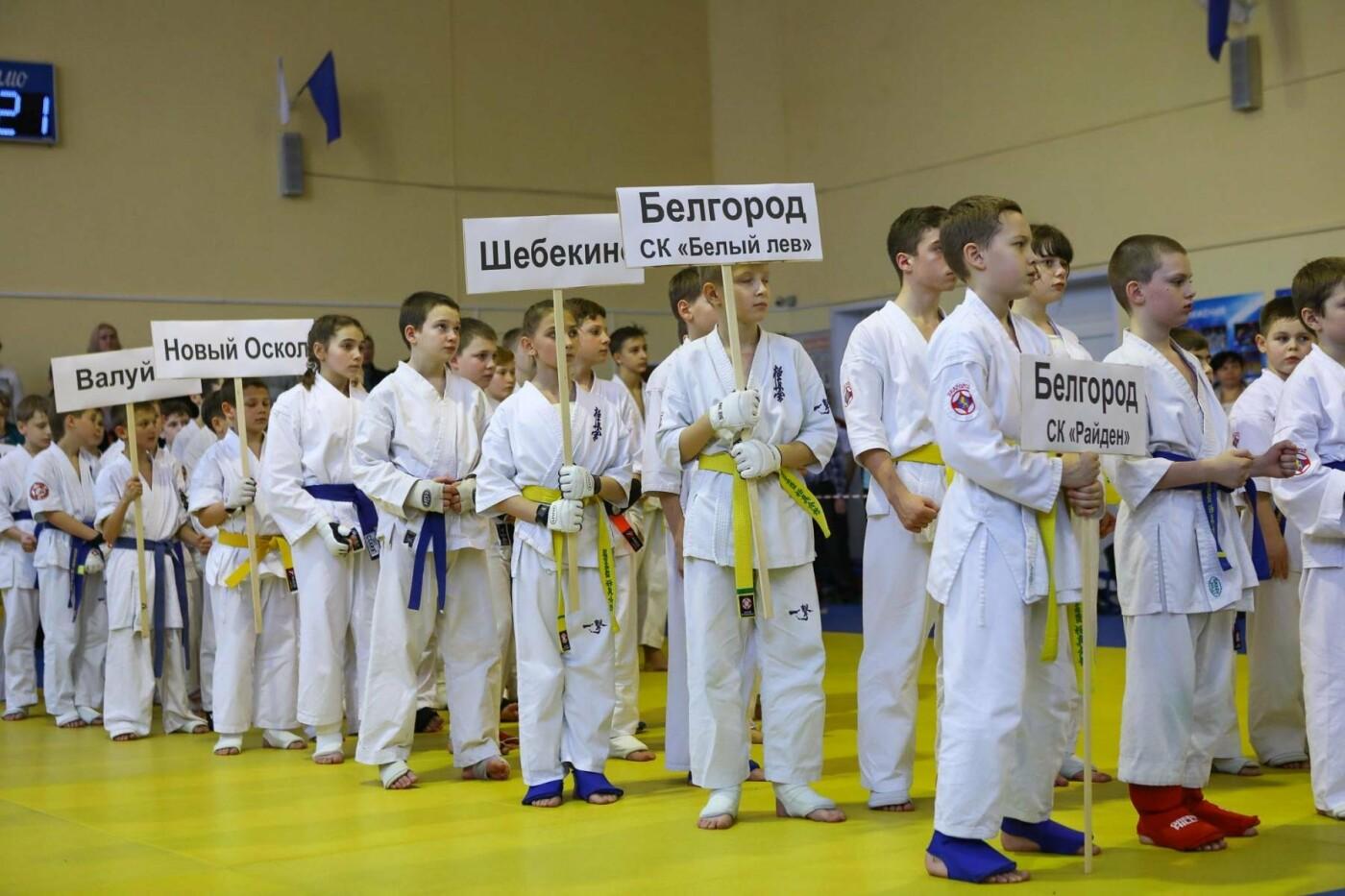 Белгородцы взяли главный кубок в межрегиональном турнире по карате, фото-12