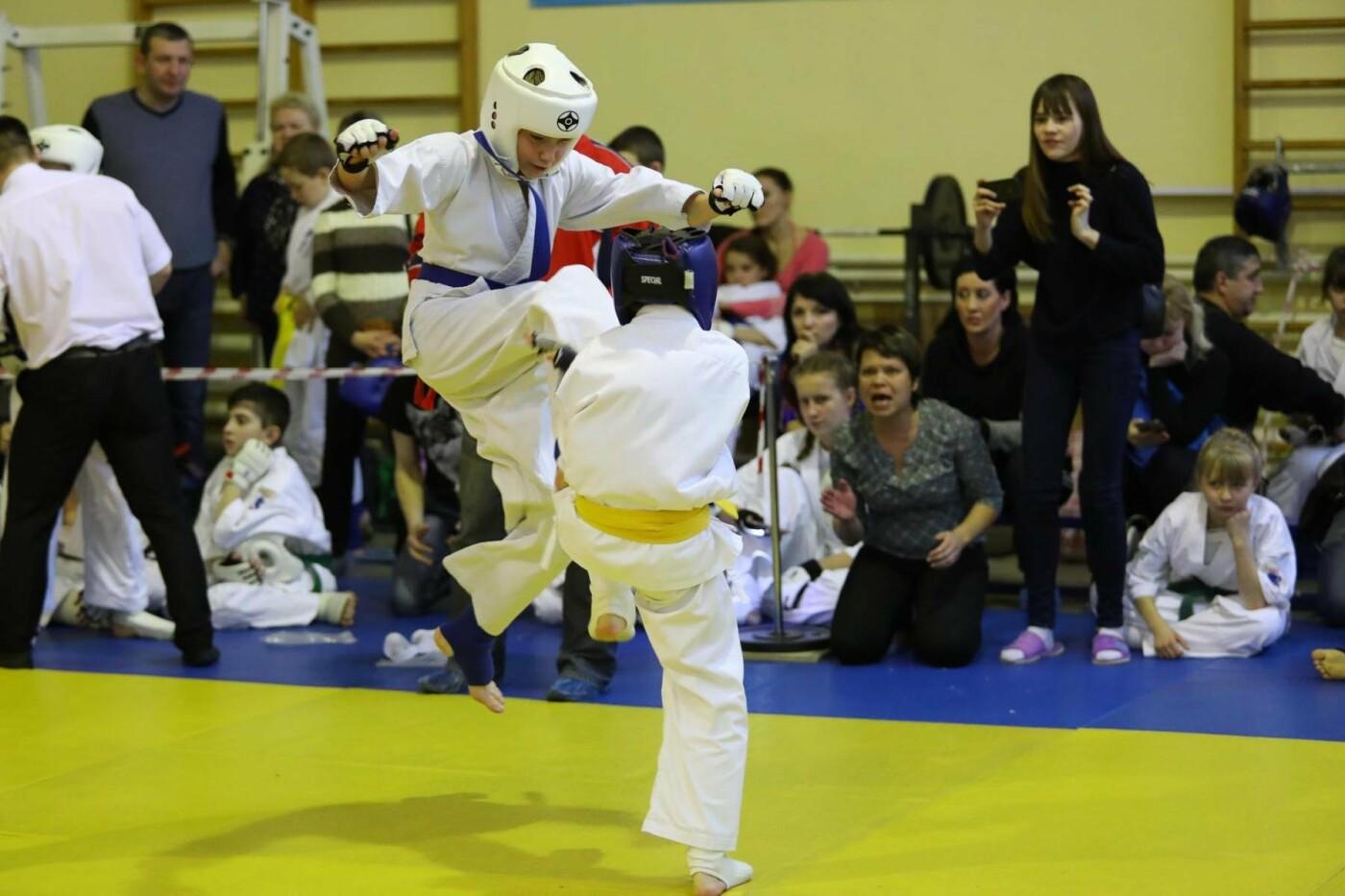 Белгородцы взяли главный кубок в межрегиональном турнире по карате, фото-5