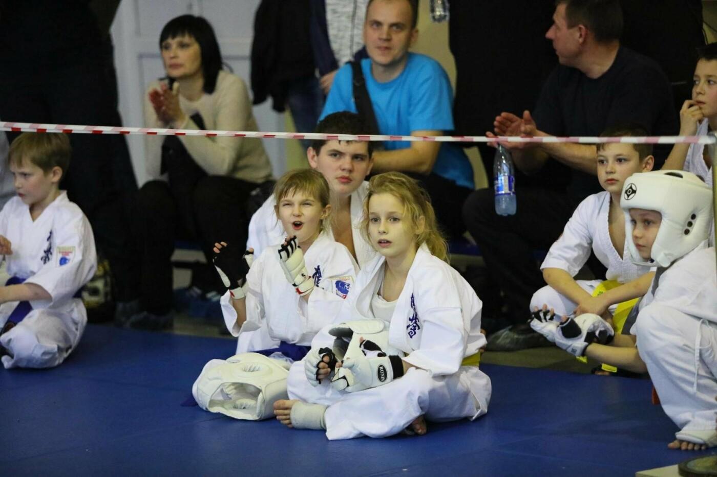 Белгородцы взяли главный кубок в межрегиональном турнире по карате, фото-9