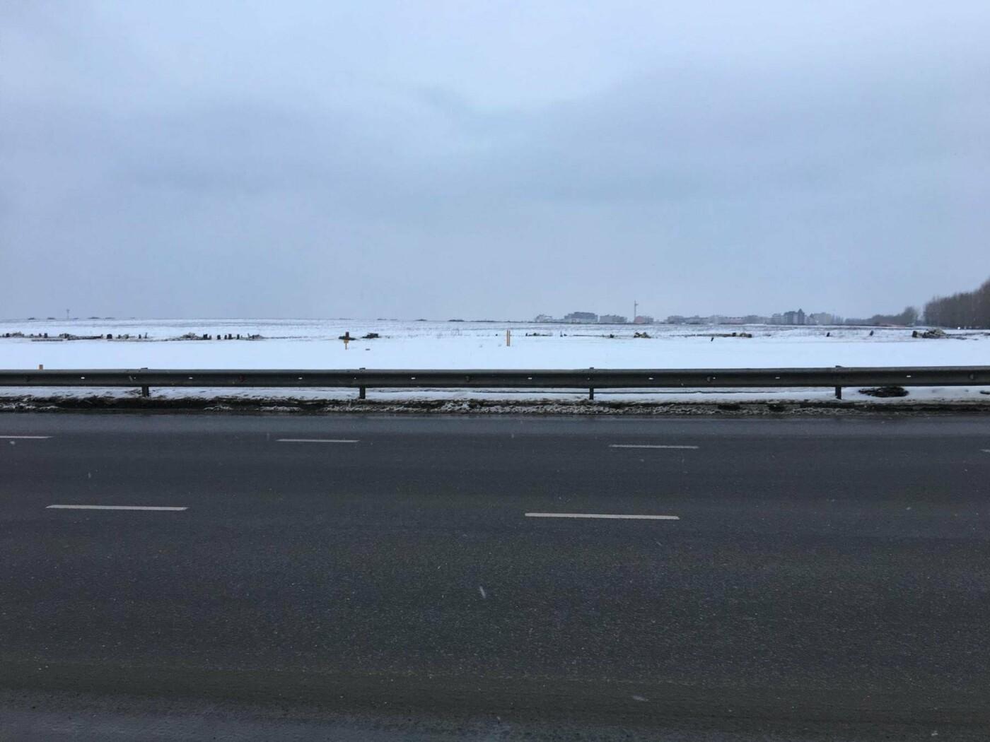 В Дубовом на месте спиленных берёз появится «Парк Дуба», фото-2