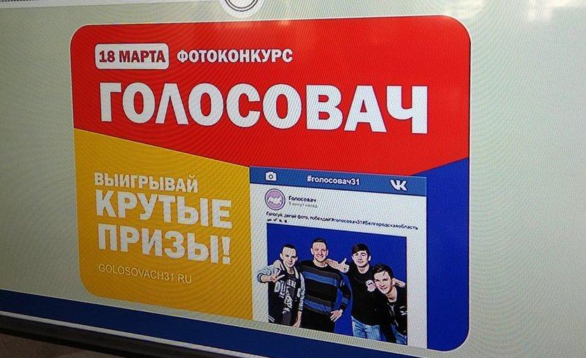 Проголосуй — получи приз! В Белгороде дали старт фотоконкурсу «Голосовач» , фото-1