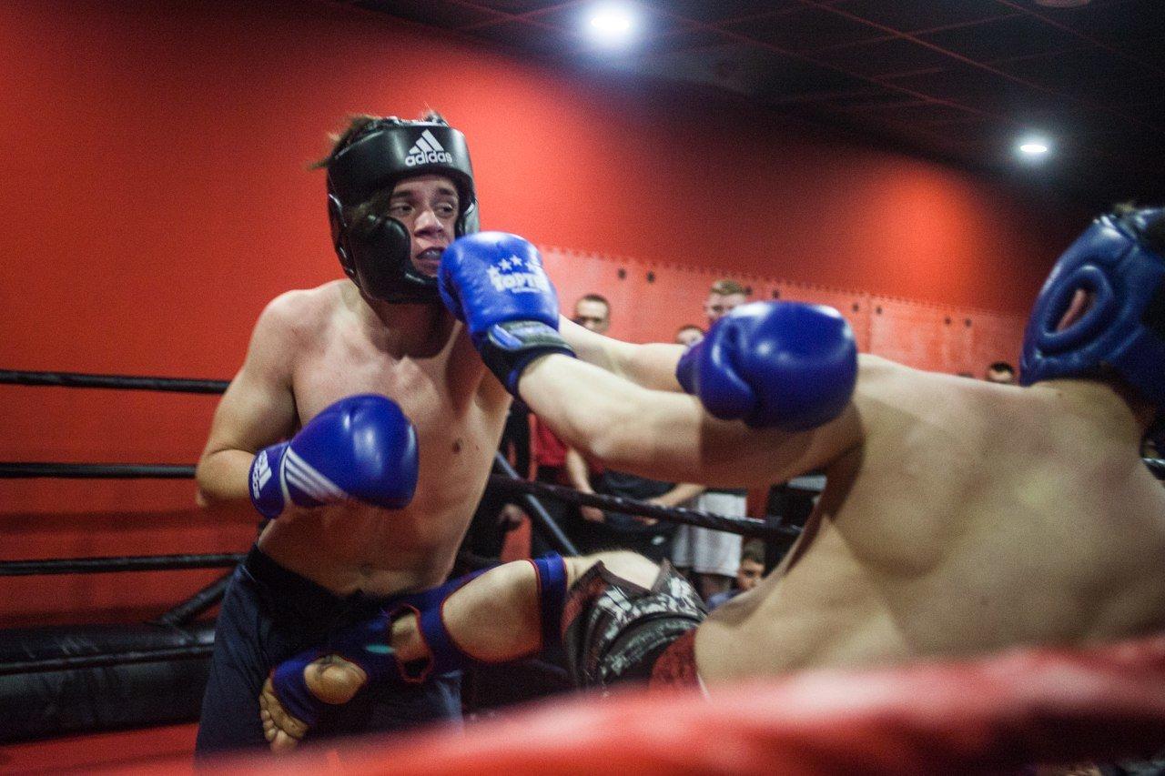 В Белгороде прошли состязания по боксу и кикбоксингу, фото-1