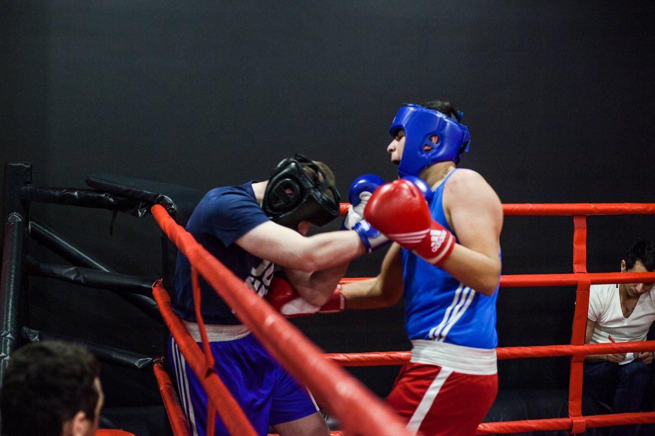 В Белгороде прошли состязания по боксу и кикбоксингу, фото-8