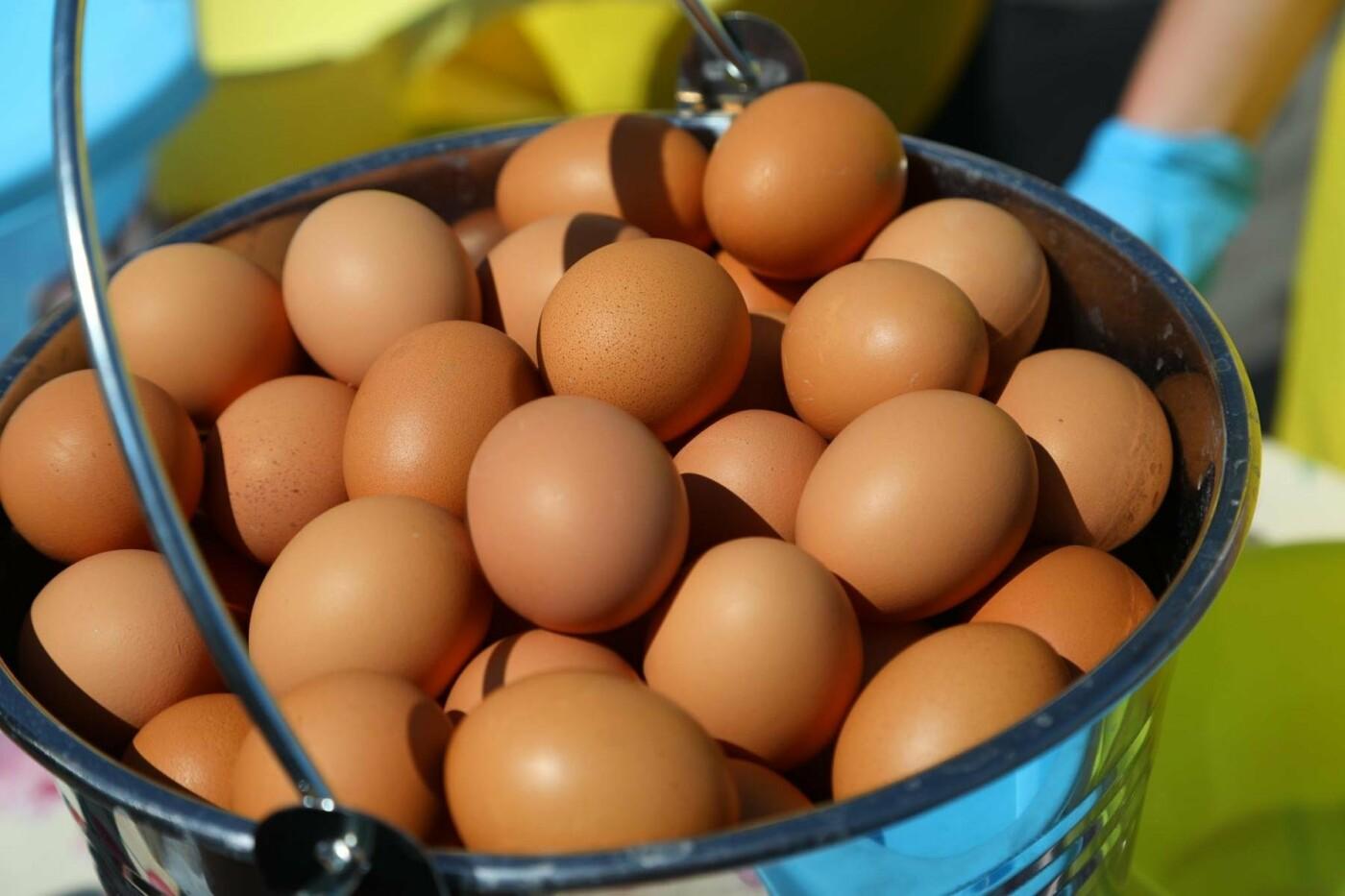 «У кого яйца, тот и прав». Как жители вымышленного города создают культ яичности, фото-30