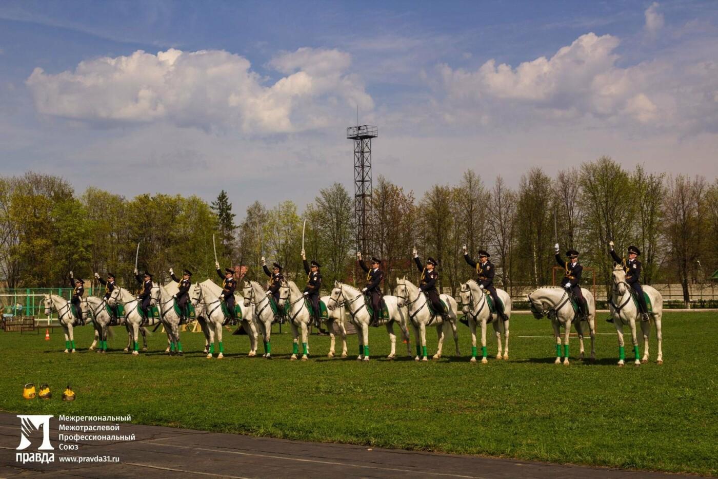 Белгородцы посетили Голицынский пограничный институт ФСБ России и стали третьими в военно-спортивной эстафете, фото-8