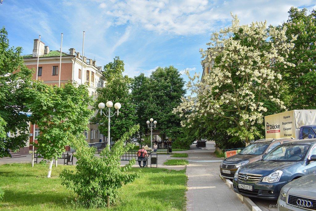«Чистота и плохой вкус». Урбанист Аркадий Гершман оценил Белгород, фото-4