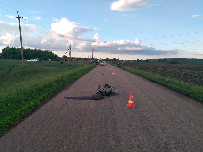 В Белгородской области в субботу погибли водители мопеда и велосипеда, фото-1