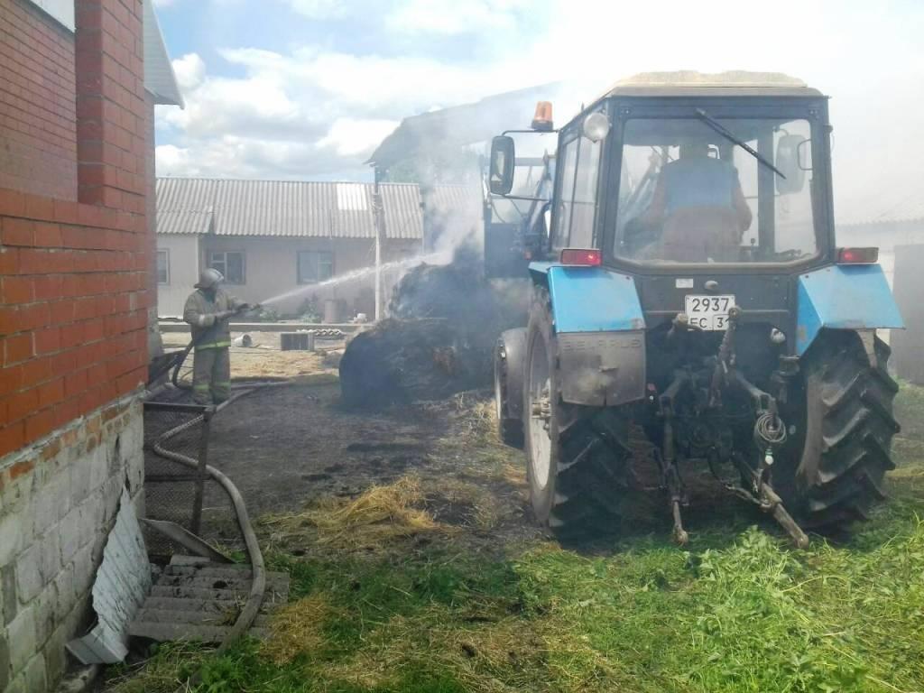В Айдаре сгорели 12 тонн сена, фото-1