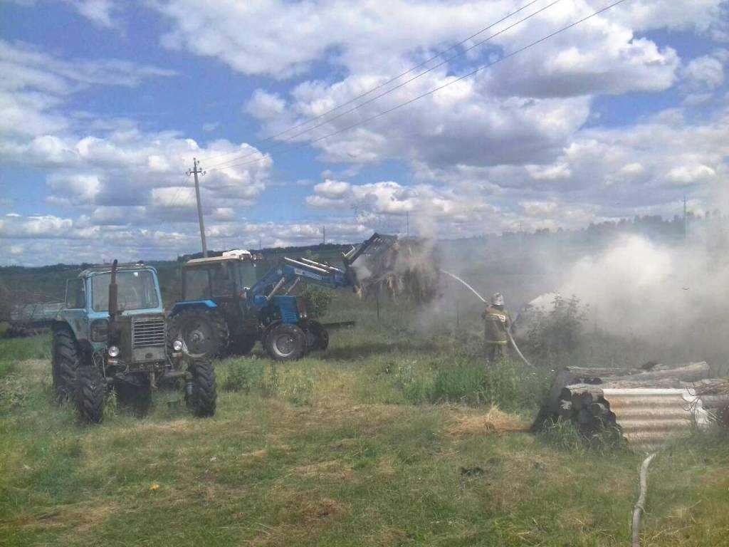 В Айдаре сгорели 12 тонн сена, фото-2