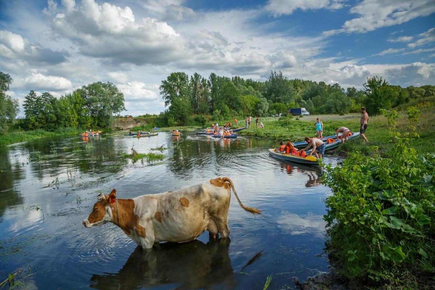 Первый «Open Air Байдаринг Party» под Белгородом: как это было? Фоторепортаж , фото-5