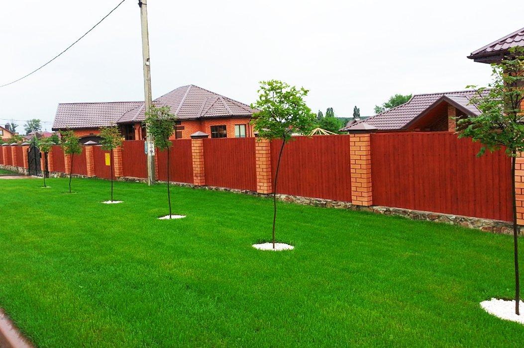 Чужими руками. «Зелёный мир» сделает ваш сад и двор красивыми, фото-1