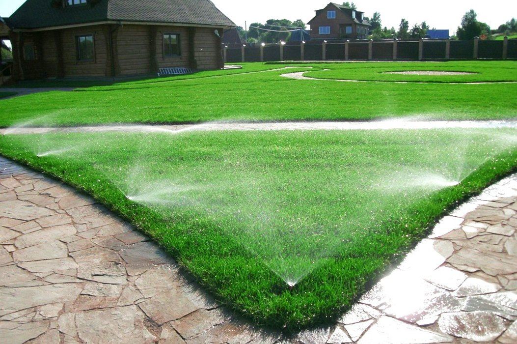 Чужими руками. «Зелёный мир» сделает ваш сад и двор красивыми, фото-10