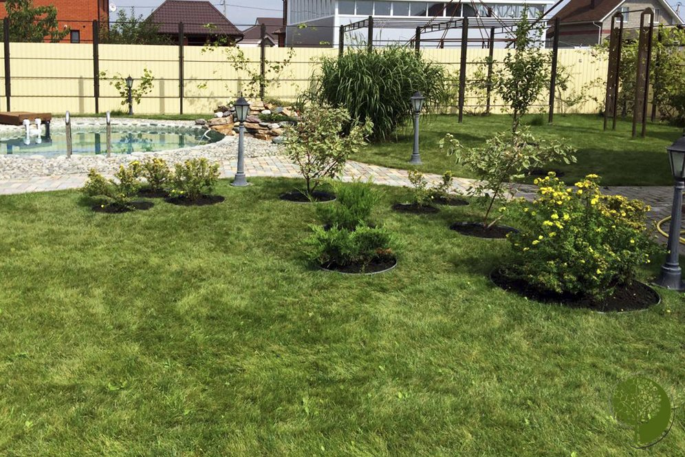 Чужими руками. «Зелёный мир» сделает ваш сад и двор красивыми, фото-15
