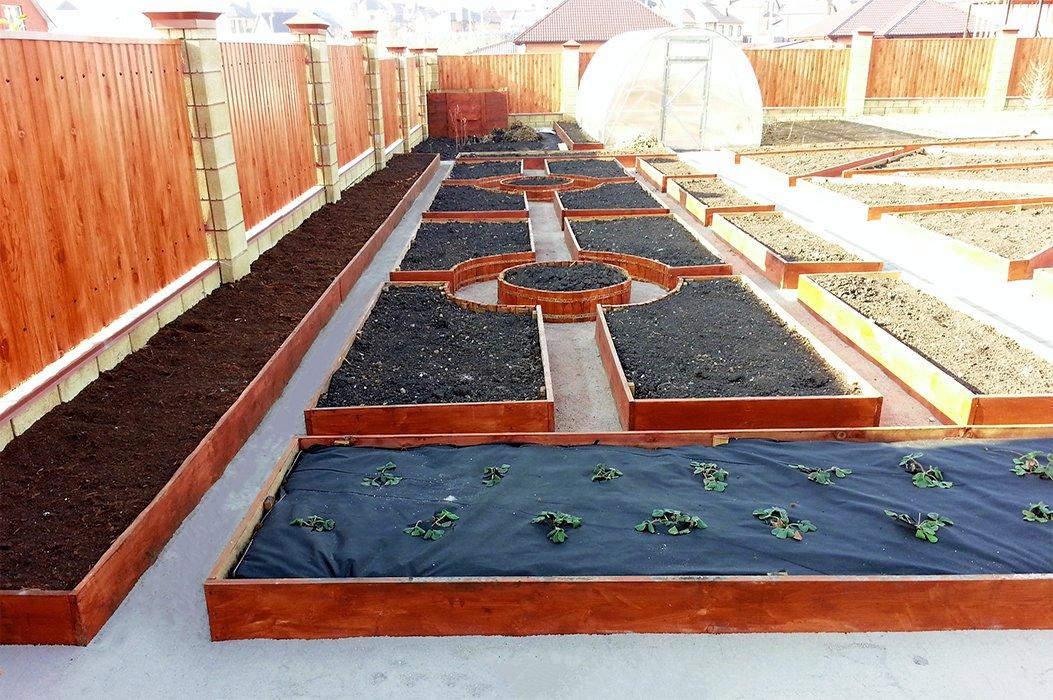Чужими руками. «Зелёный мир» сделает ваш сад и двор красивыми, фото-14