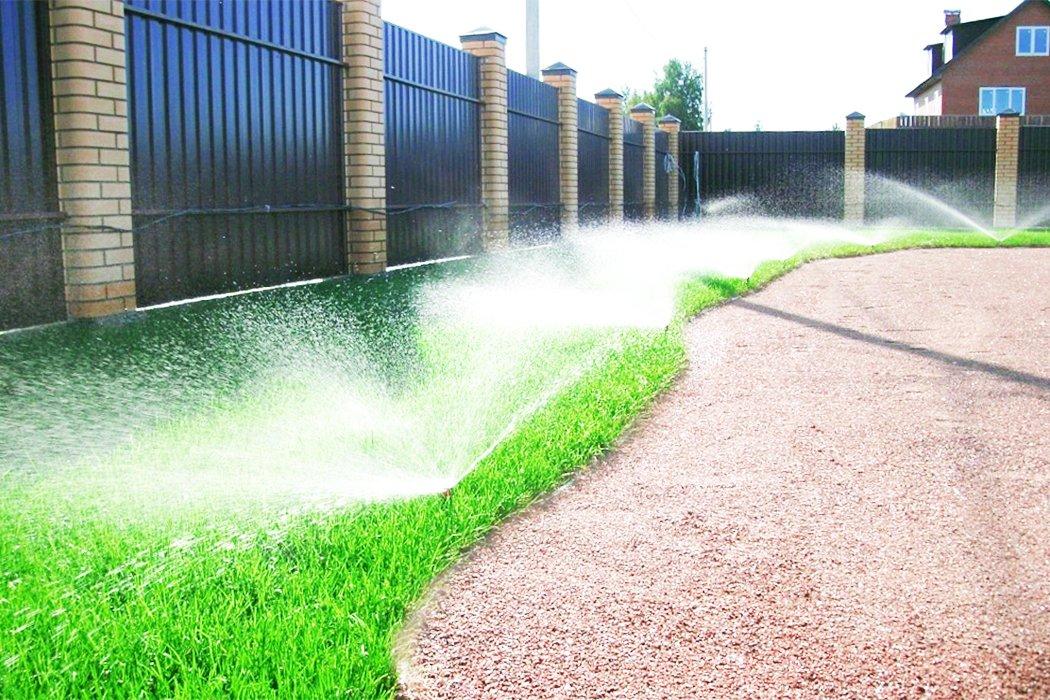 Чужими руками. «Зелёный мир» сделает ваш сад и двор красивыми, фото-12