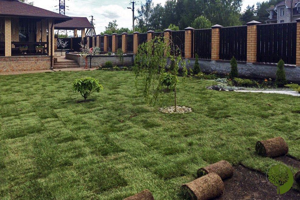 Чужими руками. «Зелёный мир» сделает ваш сад и двор красивыми, фото-17
