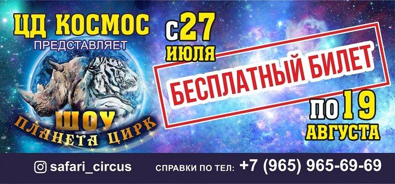 Эквилибристы, белые тигры и носорог. Белгородцев ждут на шоу «Планета Цирк», фото-3
