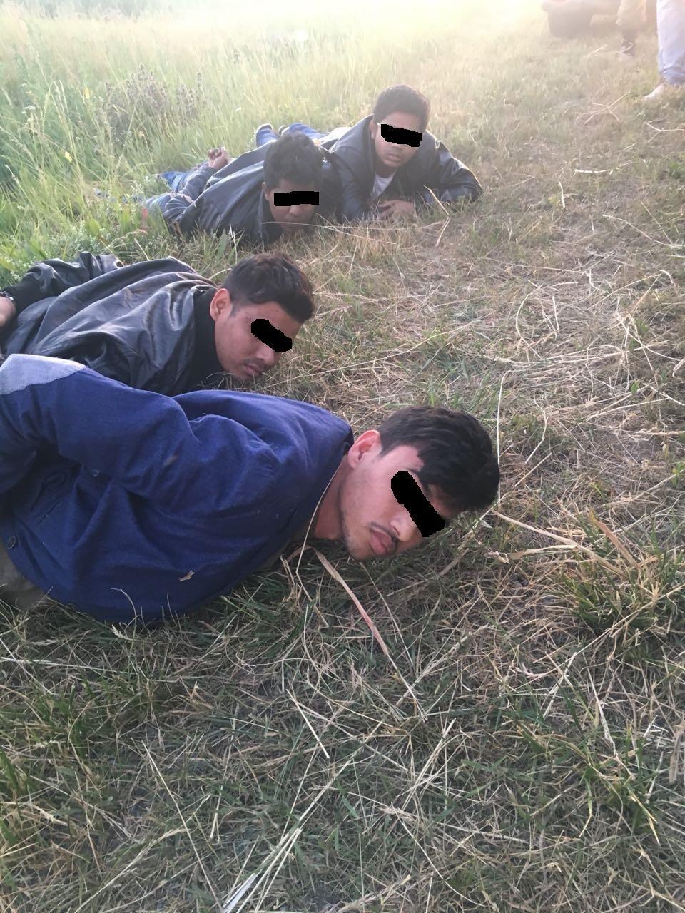 В Белгороде пресекли попытки мигрантов въехать в ЕС под видом болельщиков, фото-3
