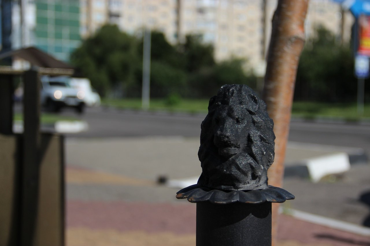 Львы заполонили улицы Белгорода, фото-6